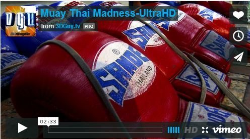 muay-thai-madness-3dguy-digital-samurai-4k-video-al-caudullo